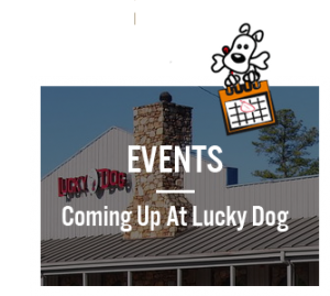 Events - Coming Up At Lucky Dog