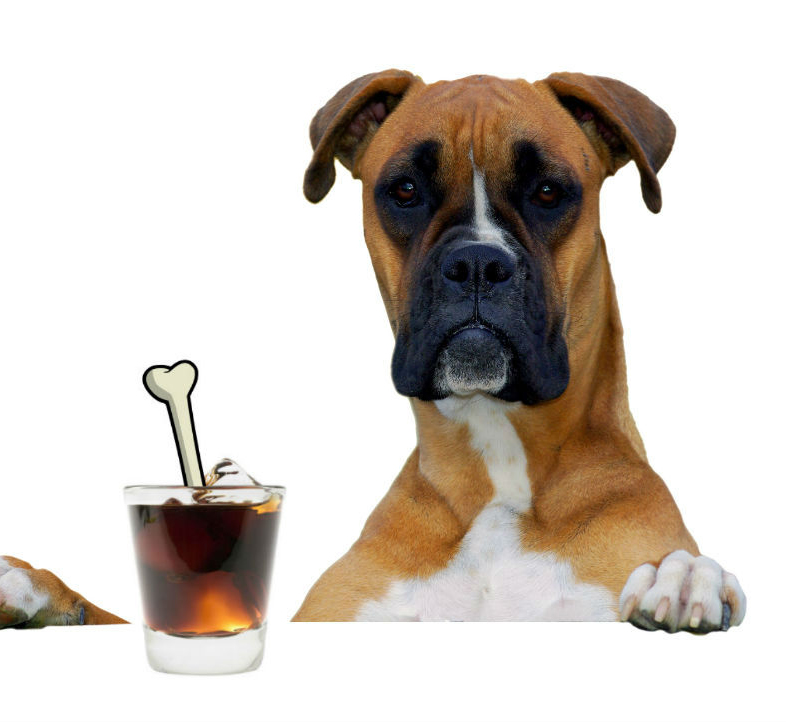 boxer-with-drink